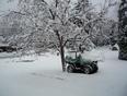 Plus de 10 cm. de neige ici ce matin