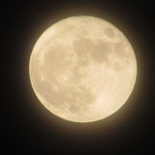 Just took this picture of the supermoon