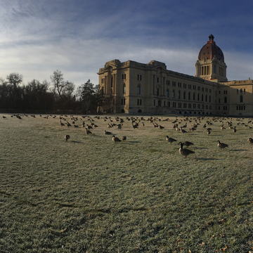 Morning frost in Wascana Park