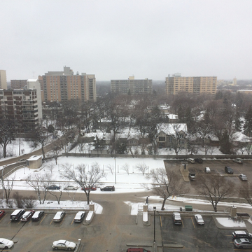 Snowy day here in Winnipeg