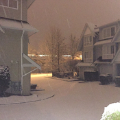 Snowfall in south Burnaby
