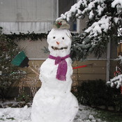 Burnaby Snowman - Dec 05 - 2016