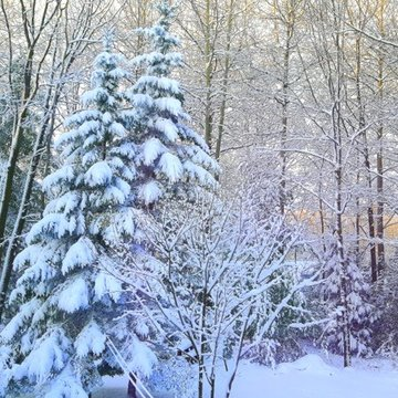 FIRST 'BIGGER' SNOW OF DECEMBER 2016