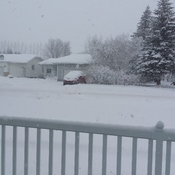 Moosomin snow fall