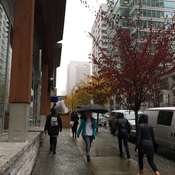 Downtown Vancouver - Umbrellas for Snow