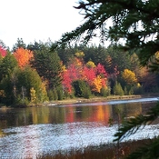 fall at Mayflower Lake