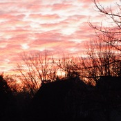 It was a beautiful morning in Beaverton On. This morning!