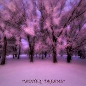 *Winter Dreams*