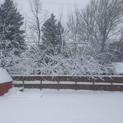 Snow in Steinbach mb