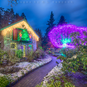 Butchart Gardens ~ Christmas Lights