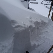 out our door this morning after noel shoveled a bit