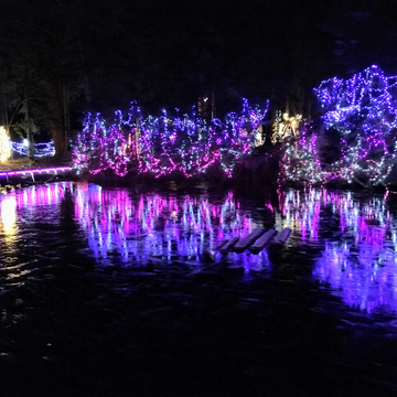 Stanley Park Bright Nights