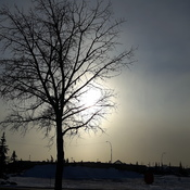 Sundog brightens the cold Calgary sky