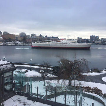 Coho leaving a snowy harbour