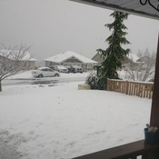 snow in Nanaimo