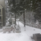 it a snowing in coquitlam