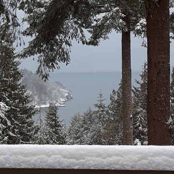 snow on Bowen Island
