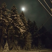 Moonlight Snow