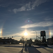 Sun dog visits Edmonton