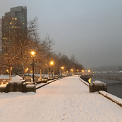 Snow in Coal Harbour