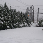 Campbell River Snow Storm