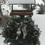 Christmas bird feeder
