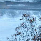 The freezing and thawing of the lake