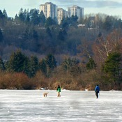walk the dog on a frozen lake