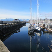 Beautiful Sunday 15th January for a walk at Comox Marina