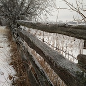 Frozen Cedar Rail Fence