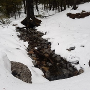 little stream going through the snow