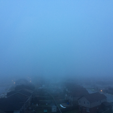 Fog in SW London Ontario