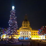 Legislature At Christmas