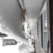 Snow Curtain