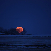Full moon Blackie,Alberta