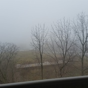 Can see the bridge... fog has taken over