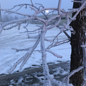 Frost in Wetaskiwin