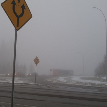 Really foggy all day...