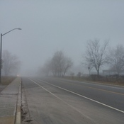 Fog in Oakville