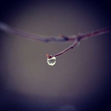 Lonely drop