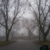 foggy day