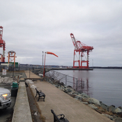 Container Terminal,Point Pleasant Park.