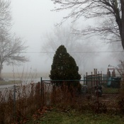 Fog In Windsor, On