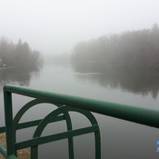 Foggy Grand River