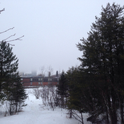 A foggy day in Dryden