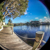 A fish eye view