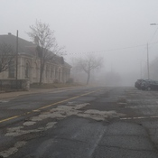 Fog in Windsor