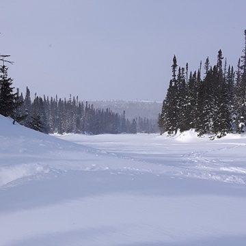 snowmobiling in Taylor's brook.
