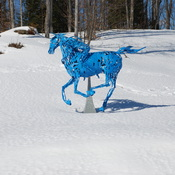 Snow, no problem for this blue horse and rider