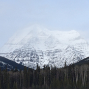 Rocky Mountains mount Robson British Columbia clearing for a view